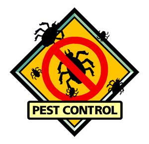 You deserve the protection! Best Sellers of Pest Control Products Roundup @Amazon