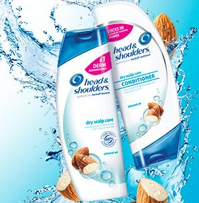 $3.98 + Free Shipping Head & Shoulders Dry Scalp Care with Almond Oil Dandruff Shampoo 13.5 Fl Oz (Pack of 2)