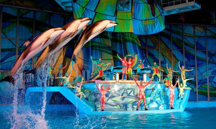 $31.5 Admission for an Adult or Child to SeaWorld San Antonio