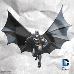 Up to 55% off Batman Collection @ Zulily