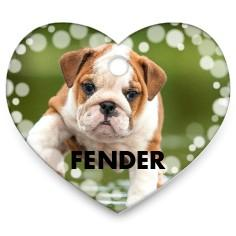 FREEPersonalized Pet Tag