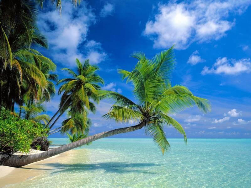 Up to $150 OFF, Lost in Paradise 2015 Hawaii Tour Packages Sale @ Usitrip.com
