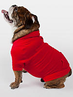 Up to 50% OffDoggy Apparel @ American Apparel