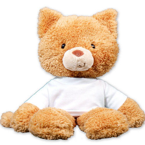 """$14.98 Personalized Get Better Soon Cat - 14"""""""