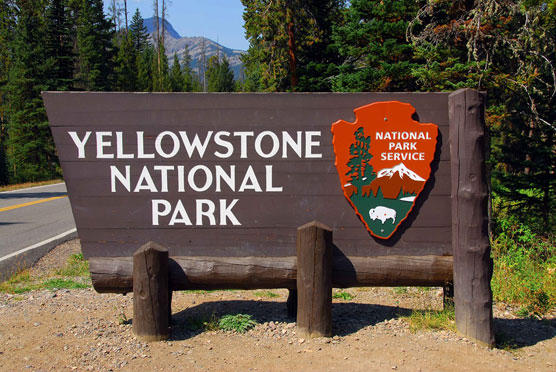 Up to 50% Off Yellowstone National Park  Product @ Lulutrip