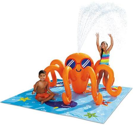 Play Day Octopus Play Center Swimming Pool