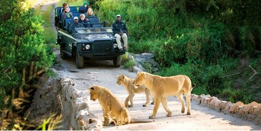 $4998South Africa 5-Star Safari+Roundtrip Airfare @ TravelZoo