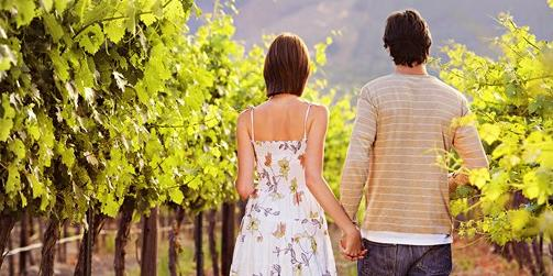 $29Napa or Sonoma Wine Passport for 2