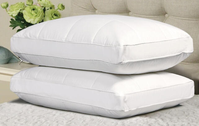 $29.99 2-Pack of Quilted Feather Down Pillows