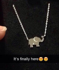 Amazon Collection Sterling Silver Stationed Elephant Necklace