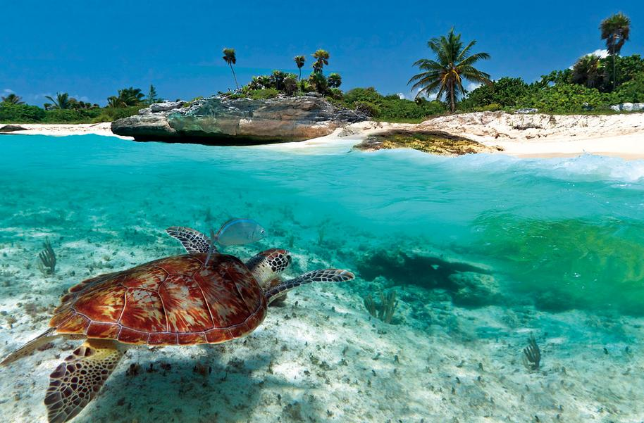 Save Up to $500 Carribbean Vacation Package Deals @ Priceline