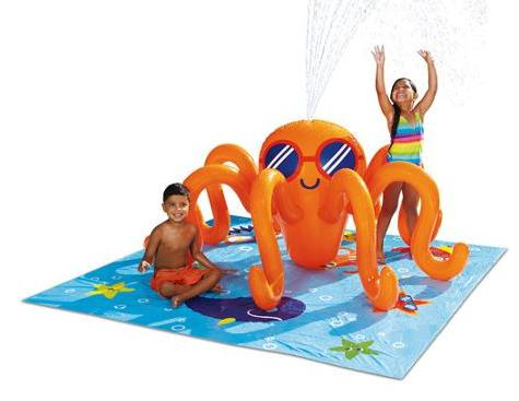 $14.97 Play Day Octopus Play Center