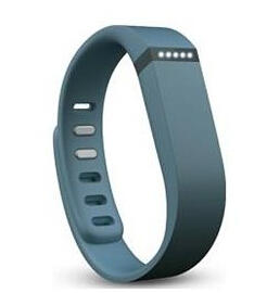 Fitbit® Flex® Wireless Activity & Sleep Wristband Slate