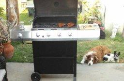 $159.99 Char-Broil Classic 40, 000 BTU 4-Burner Gas Grill with Side Burner (463436215)