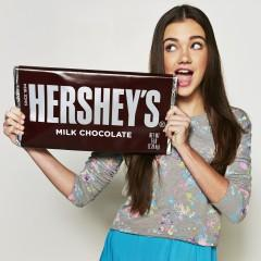 $25.91 Hershey's Milk Chocolate Candy Bar, 5-Pound Bar