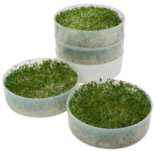 $14.99 Victorio VKP1014 4-Tray Kitchen Seed Sprouter