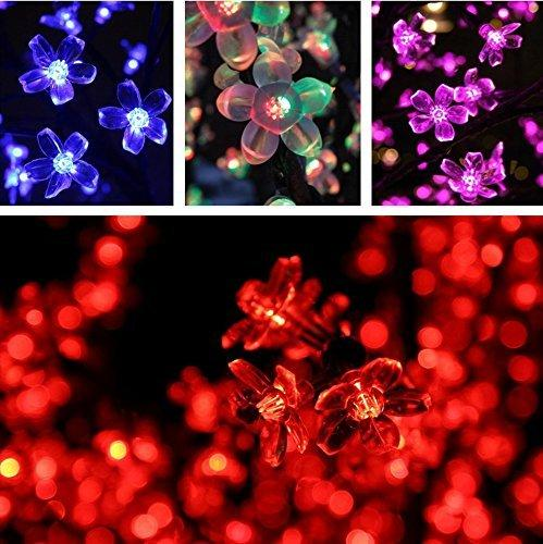 Esky® 32.8ft 100 LED Super Bright Waterproof Colorful Color Changing Cherry Led Blossom/Led Strip Light Kit