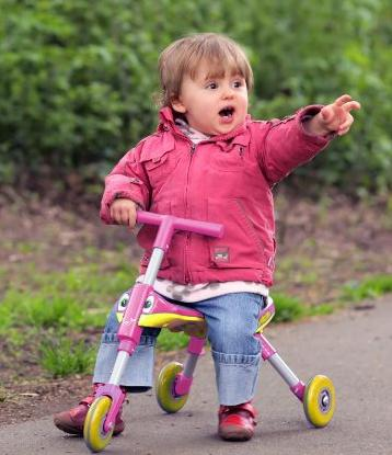 $24.95 TriBike Toddlers Foldable Indoor-Outdoor Glide Tricycle Ride On