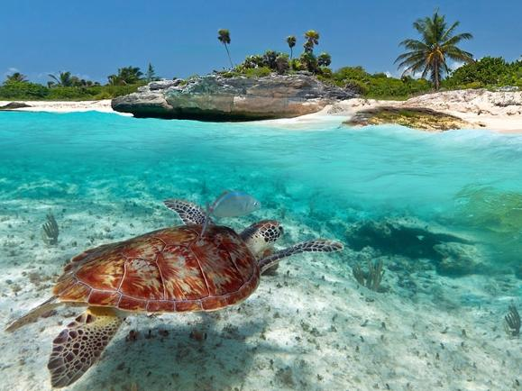 $999 5-Day Adventure for 2 to Playa del Carmen, Mexico @ Livingsocial