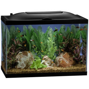 Marineland 55 gallon BioWheel LED Aquarium kit