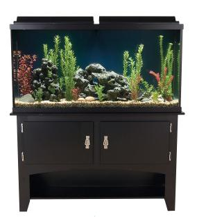 MARINELAND 60 Gallon Heartland Aquarium Ensemble