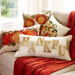 20% Off + Extra 20% Off All Pillows & Cushions @ Pier 1 Imports