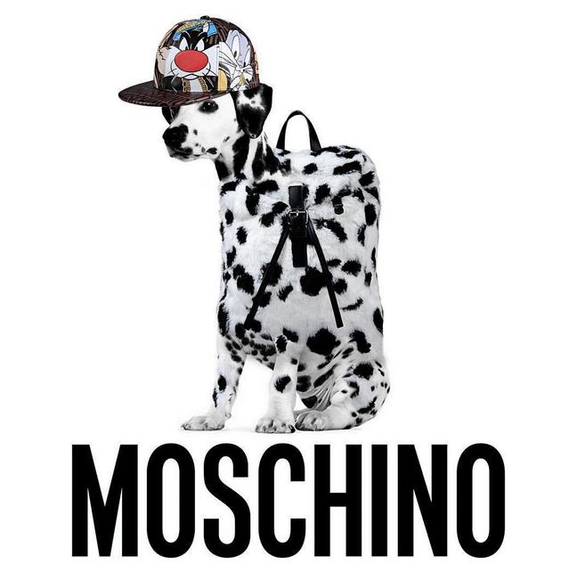 $50 Off MOSCHINO Love Collections @ FORZIERI