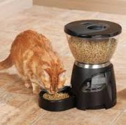 Best seller! Aspen Le Bistro Portion-Control Automatic Pet Feeder