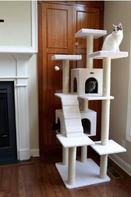 Up to 67% Off Select Pet Beds, Cat Trees, and Pet Toys @ Amazon.com