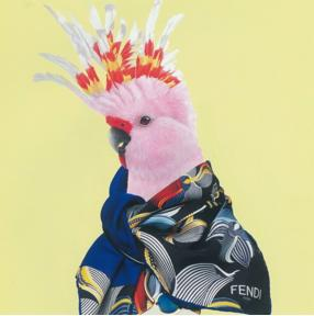 Up to 60% Off Fendi Scarves On Sale @ MYHABIT