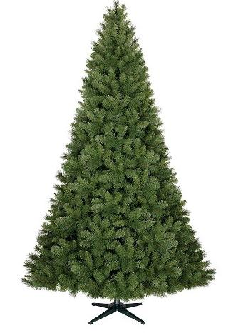 Douglas Fir 7.5 ft. Unlit Tree