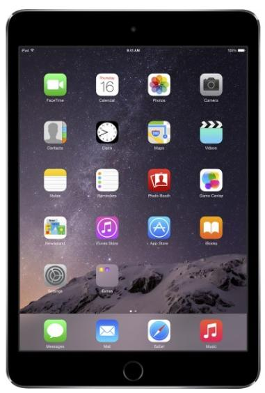 Apple - iPad mini 3 Wi-Fi 16GB - Space Gray