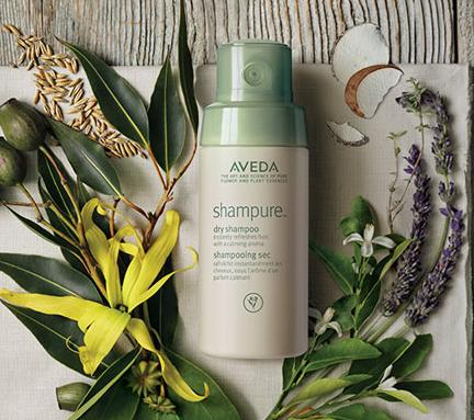 Free Intensive Restructuring Treatment + Free 2nd Day Shipping with $30 Order at Aveda