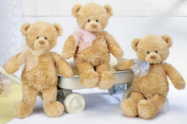 $17.09 Gund My First Teddy Bear Baby Stuffed Animal, 18 inches