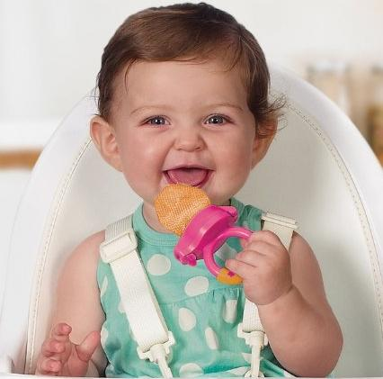 Munchkin Fresh Food Feeder, Colors May Vary, 2 Count @ Amazon