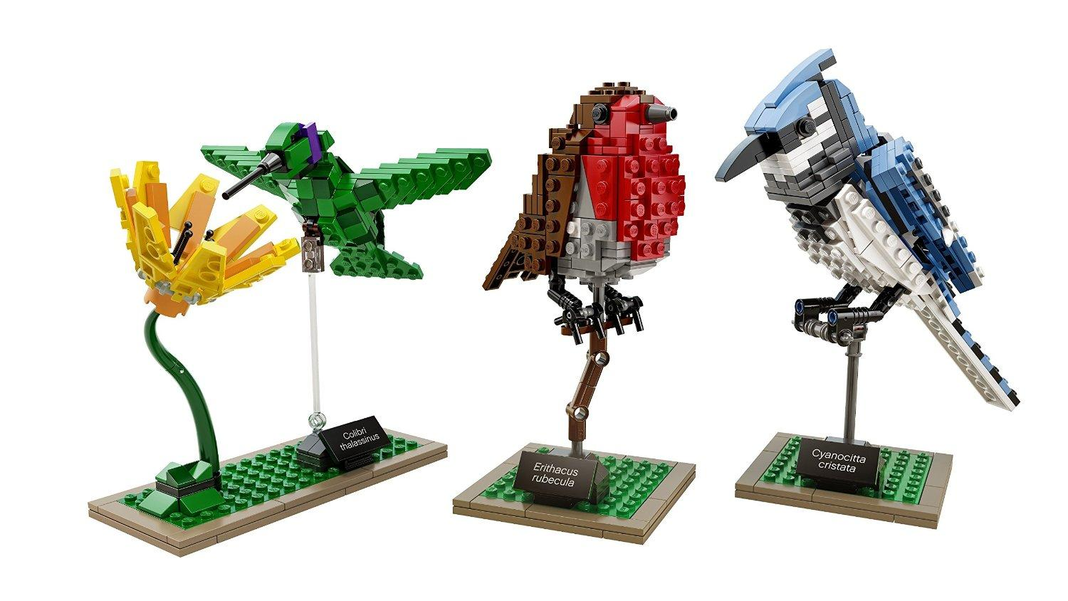 LEGO Ideas 21301 Birds Model Kit
