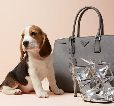 Up to 54% Off Prada Handbags, Shoes & Accessories On Sale @ Gilt