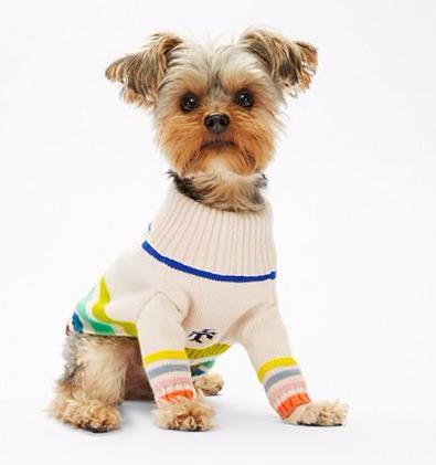 MULTI-COLOR DOG SWEATER