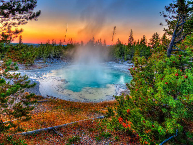 2016 Yellowstone National Park with Lodge Pre-sale Event @ Usitrip.com