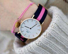 $69 Daniel Wellington Classic Winchester Eggshell White Dial Navy and Pink Nylon Ladies Watch 0505DW