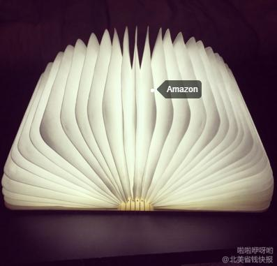 $49.98 Prudance® Book LED Light