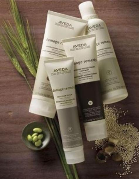Damage Remedy Sample Trio with any order @ Aveda