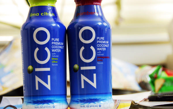 $9.3 ZICO Pure Premium Coconut Water, Natural, 14 Ounce Bottles (Pack of 12)