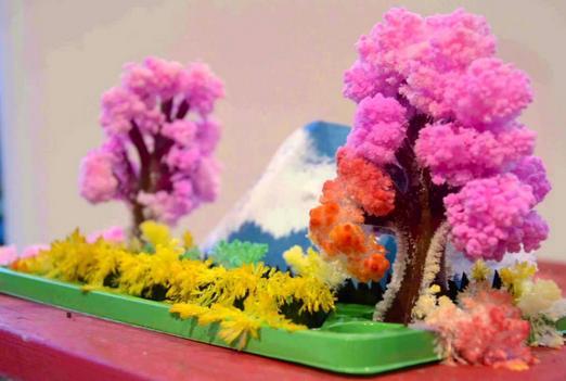 $8.06 MAGIC GARDEN from Schylling Toys