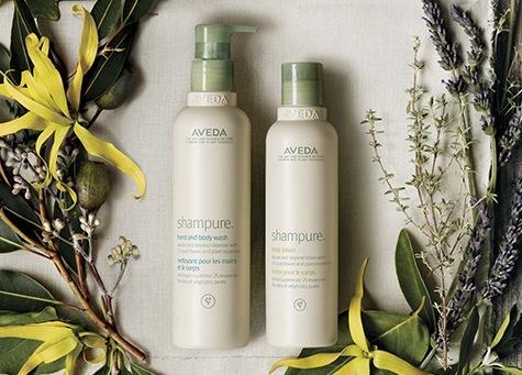 Free Pure Abundance Sample with Any Purchase @ Aveda