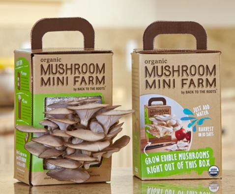 $19.42 Back to the Roots Organic Mushroom Farm