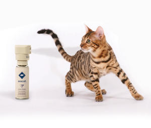 PetSafe Ssscat Cat Spray Control System