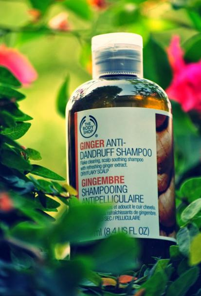 Buy 3 Get 2 Free GINGER SCALP CARE SHAMPOO @ The Body Shop