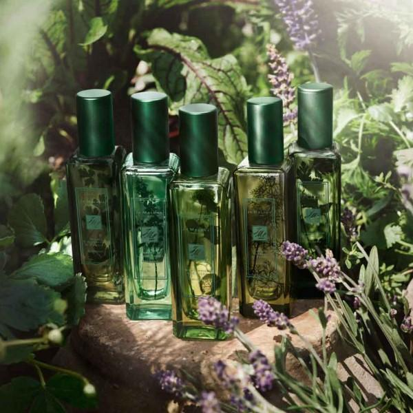 10% Off Jo Malone London @ Bergdorf Goodman