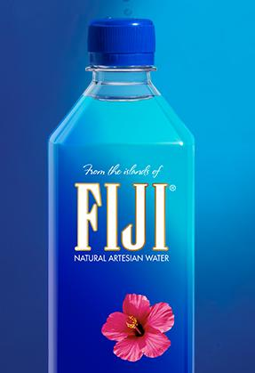 FIJI Natural Artesian Water, 16.9 Ounce Bottles (Pack of 24)